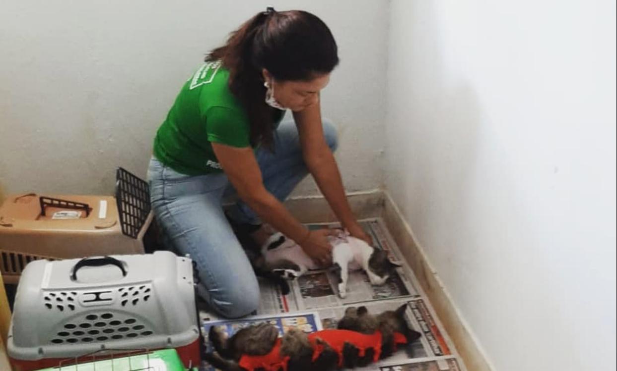 Pré-candidata é agredida em Cajazeiras